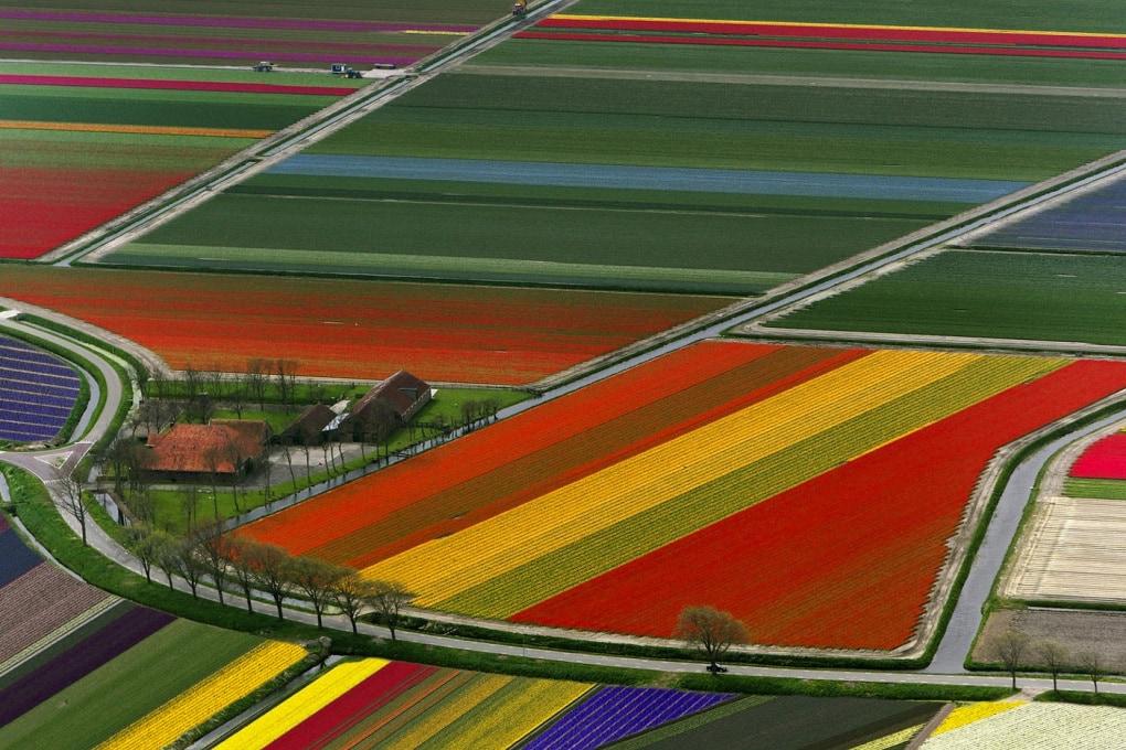 La chimica al servizio dell'agricoltura: quali conseguenze per l'ecosistema?
