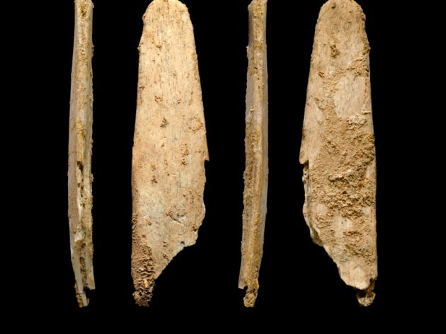 Quando i Neanderthal davano lezione ai Sapiens