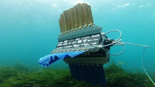 Sepios, il robot sub che nuota come una seppia