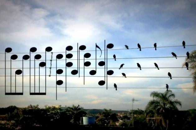Gli uccelli sui fili trasformati in note musicali