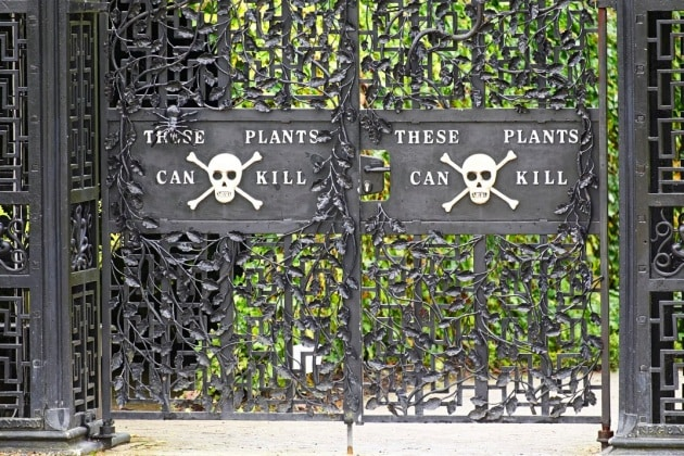 Il giardino più velenoso del mondo