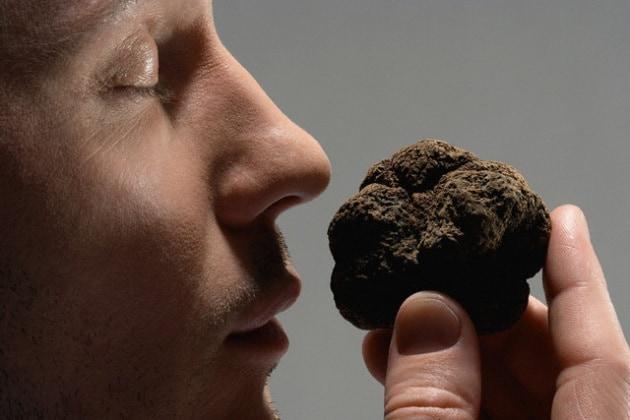 Perché gli odori non sono uguali per tutti