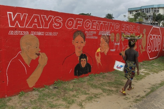Ebola, i numeri dell'epidemia