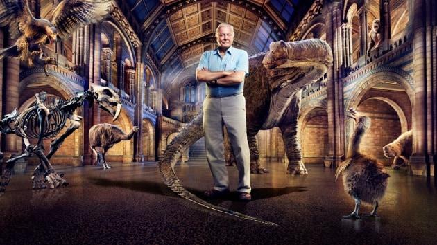 david-attenboroughs-natural-history-museum-alive-keyart-16x9-1
