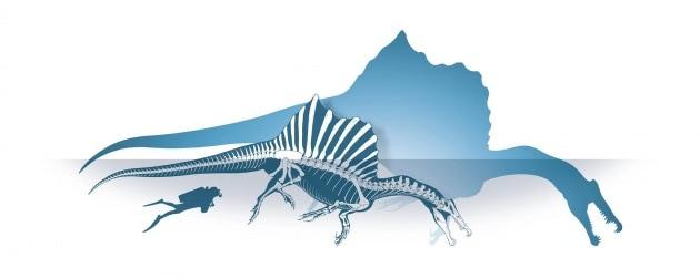 Il dinosauro acquatico