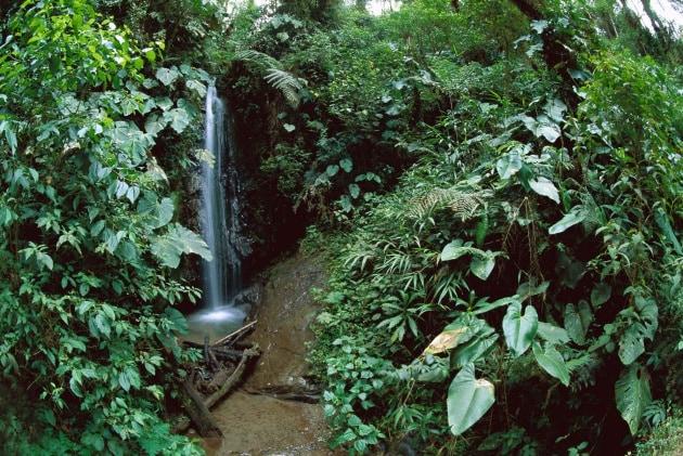 Otto domande sulla biodiversità