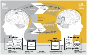 Brain to brain communication
