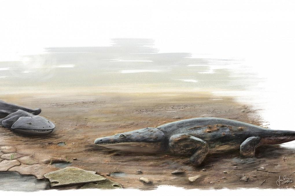 Le salamandre giganti del tardo Triassico