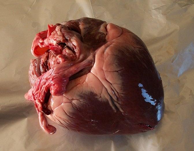 sn-heart