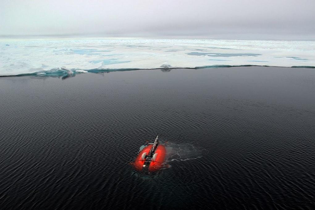Vermoni e creature gelatinose, la vita segreta dell'Artico