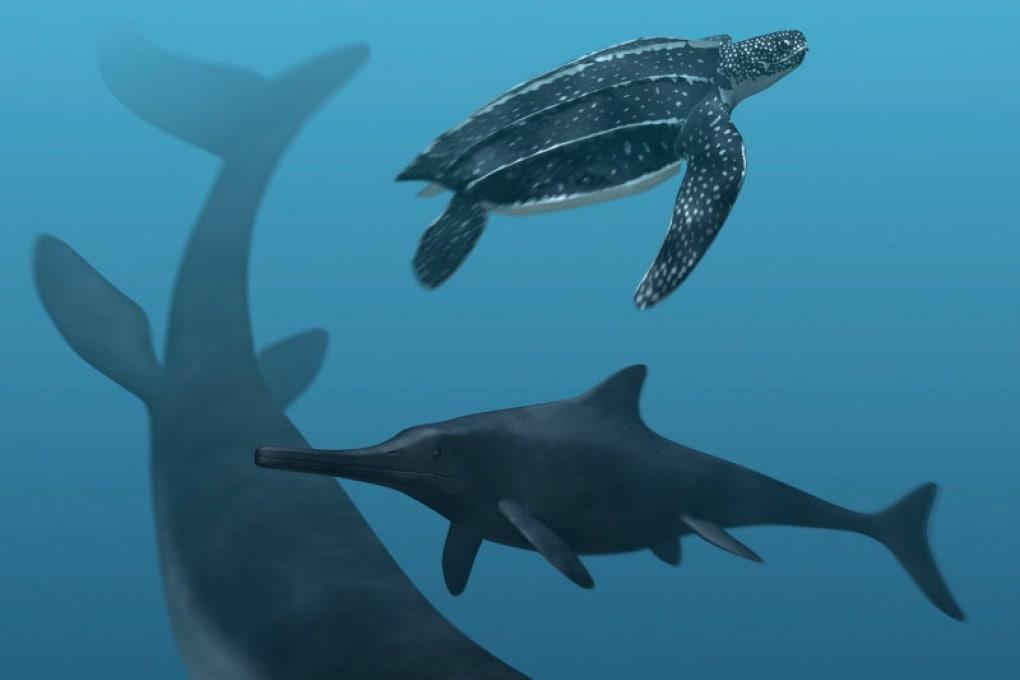 Il colore dei rettili marini preistorici