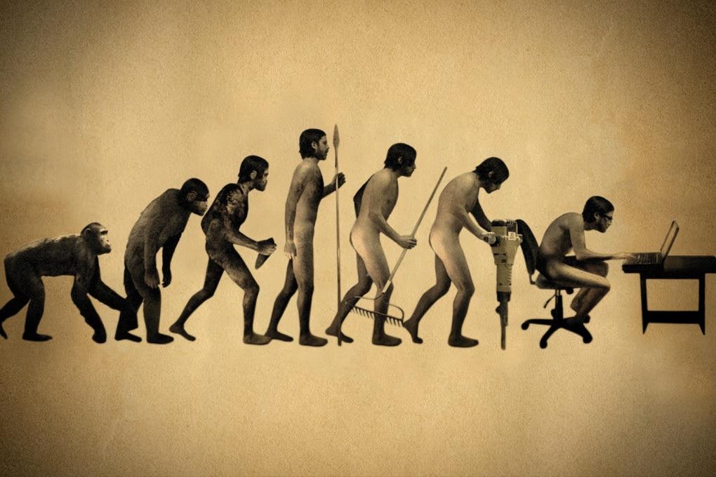 Da atleti a pantofolai: come l'agricoltura ha modificato le ossa umane