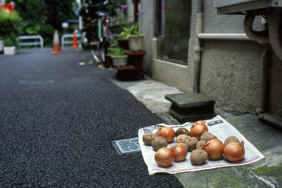patatecipolle