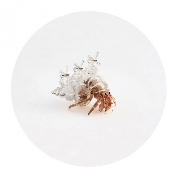 3d-printed-hermit-crab-architectural-shells-aki-inomata-6