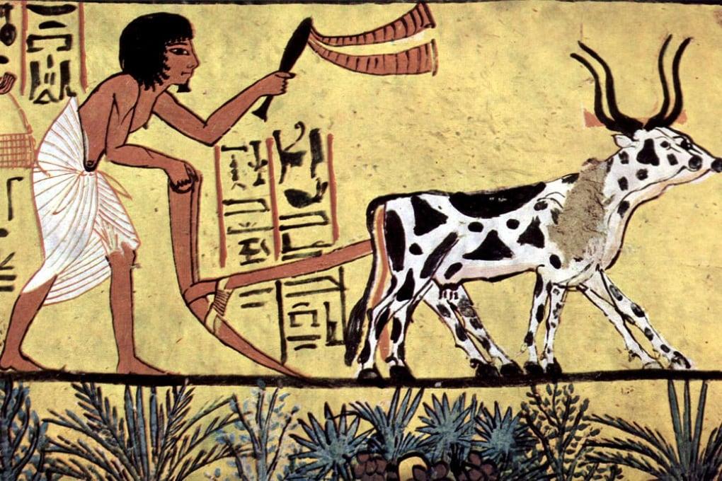 Le ossa degli antichi erano più forti?