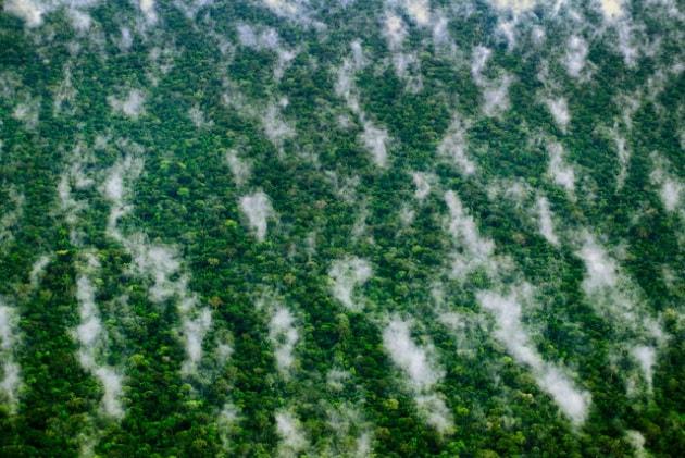 Le aree naturali protette di cui non possiamo fare a meno