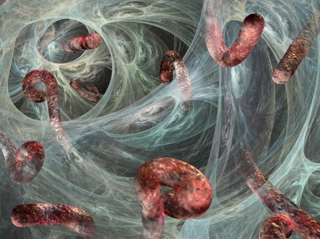 Ebola, le ricadute che non conosciamo