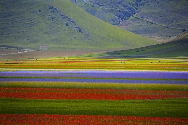 Primavera, i luoghi migliori in cui celebrarla