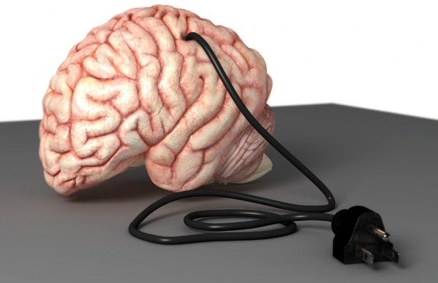Sei un cervellone?