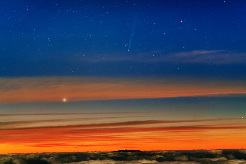 La cometa ISON sopravviverà all'avvicinamento al Sole?