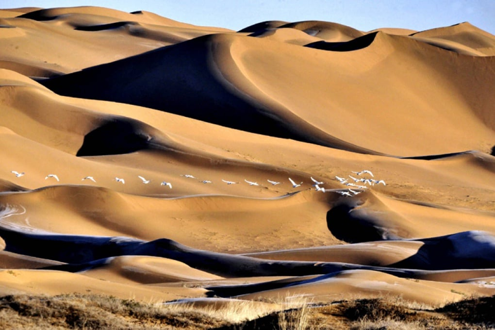 Dove tira il vento? Guarda le dune