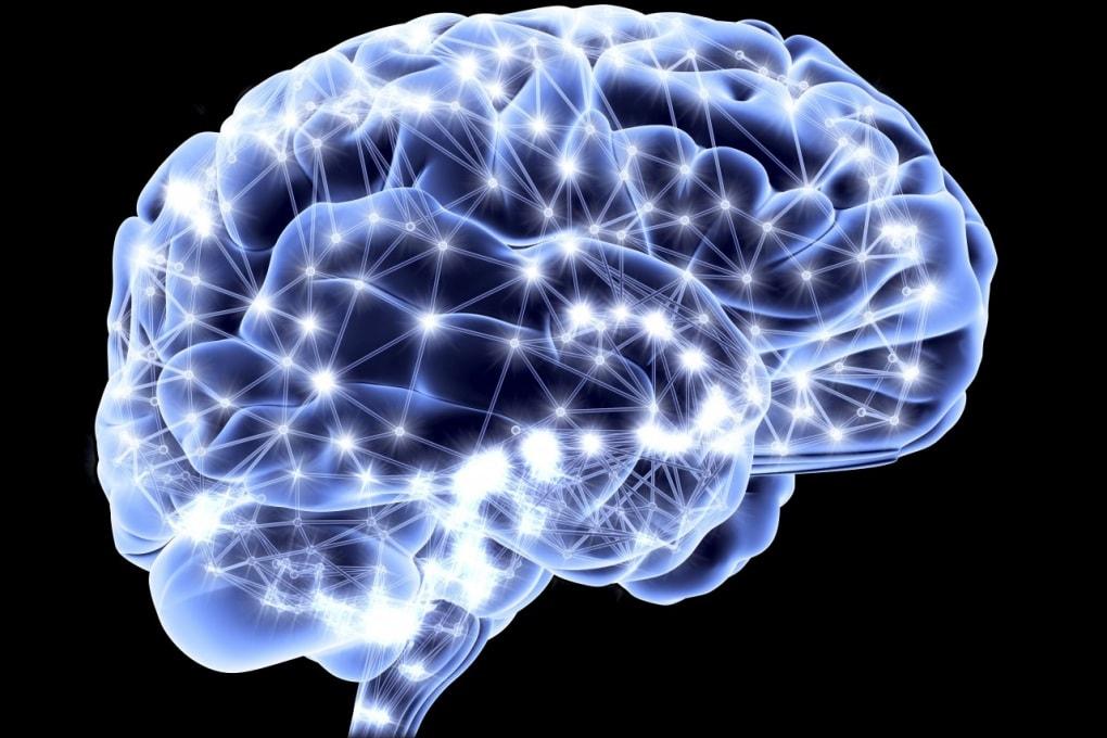 Sfruttiamo solo il dieci per cento del cervello?