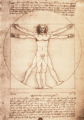 La vera storia dell'uomo vitruviano