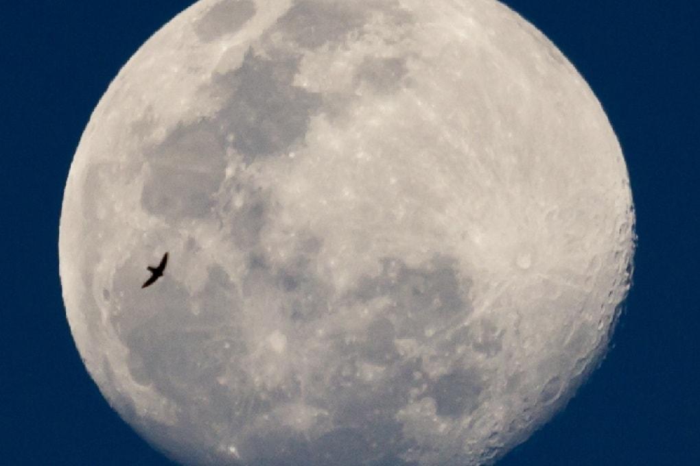 La super Luna nella notte di San Lorenzo