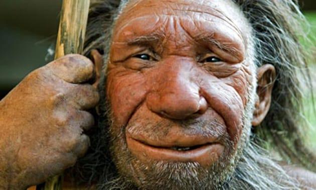 Troppa ciccia? Forse è colpa dei Neanderthal