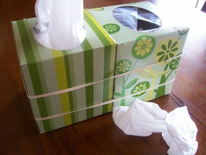 tissue_fix1-1024x768