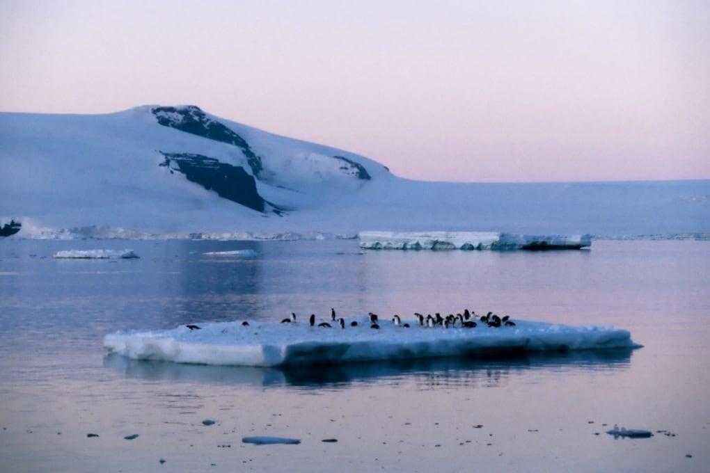 Antartide, la più alta temperatura di sempre
