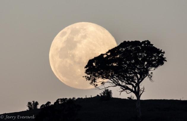 Super Luna del 10 agosto, le foto più belle