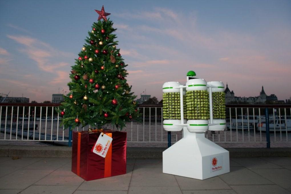 L'albero di Natale del cavol(in)o