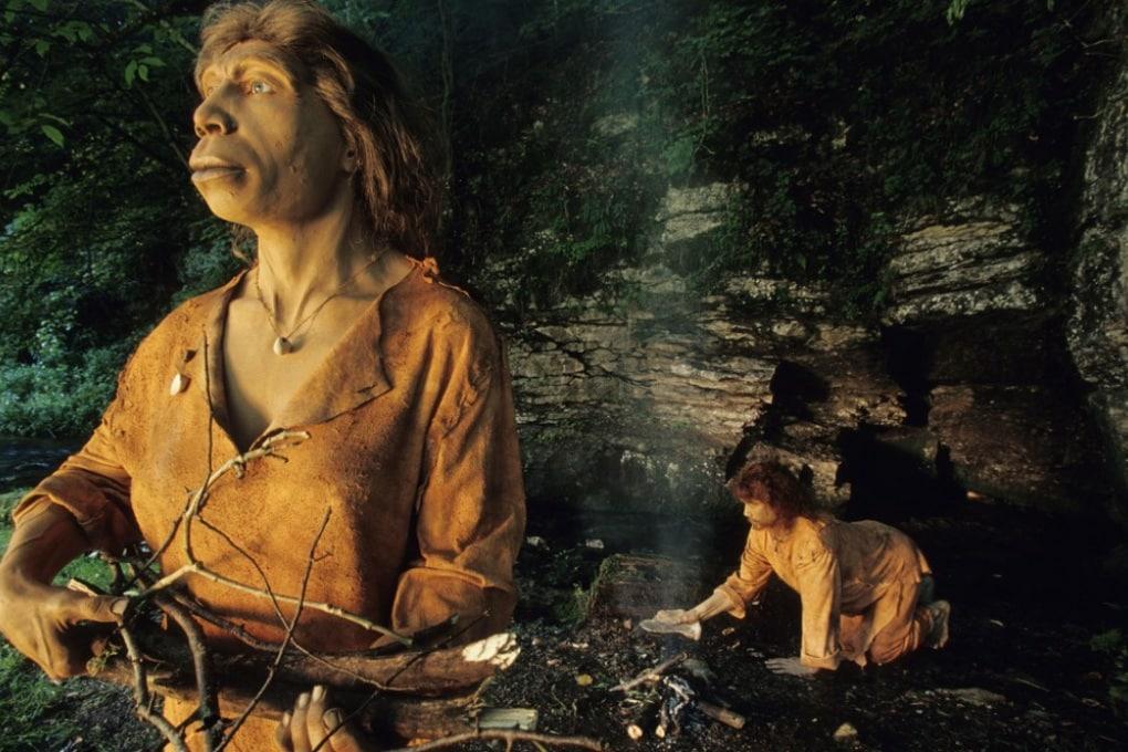 Dai più antichi escrementi umani nuovi indizi sulla dieta dei Neanderthal