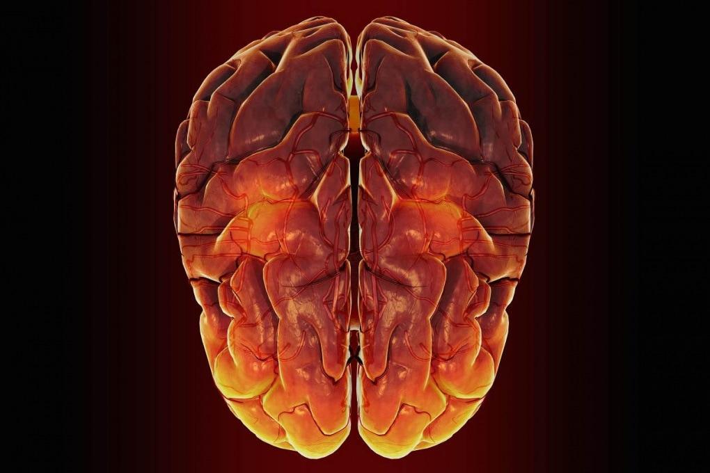 Il nostro cervello è al limite