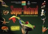 supernatural_800