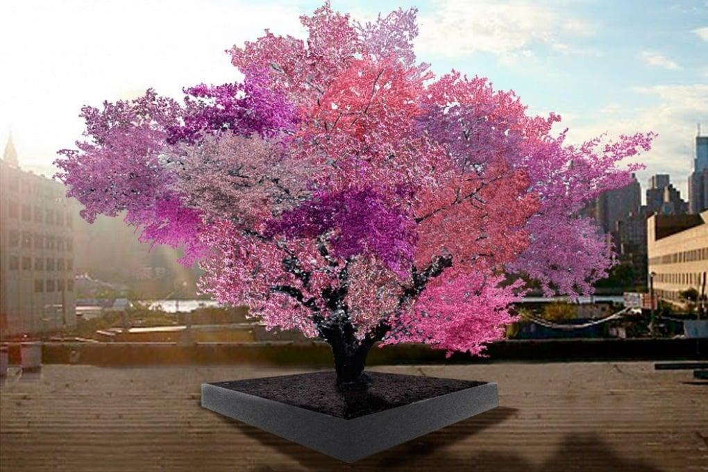 L'albero che produce 40 diversi tipi di frutta
