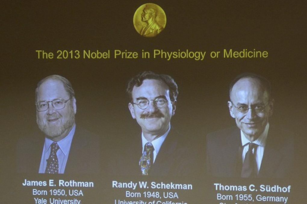 Nobel Medicina 2013 agli scopritori del sistema di trasporto cellulare