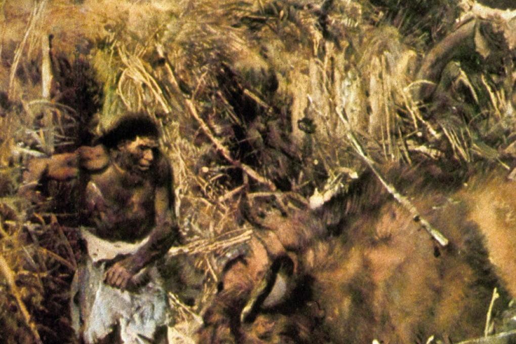 Siamo superiori ai Neanderthal? Non proprio