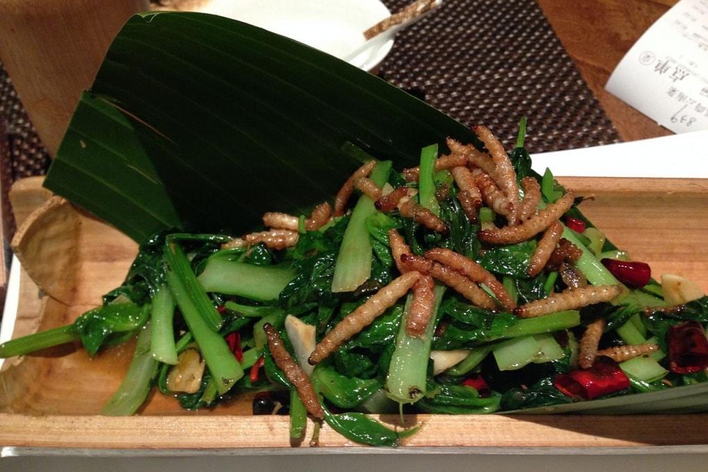 Invito a cena con insetti