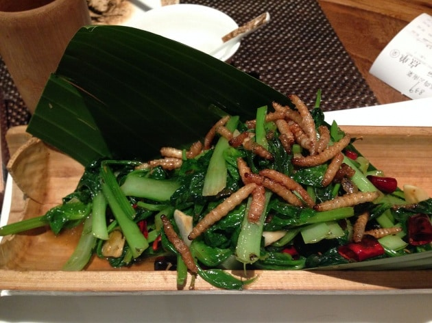 mealworm_dish_in_a_yunan_restaurant_qingdao_china