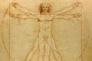 uomo-vitruviano-leonardo-da-vinci-1024x1024