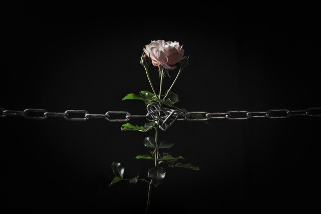 iFocus contro la violenza sulle donne