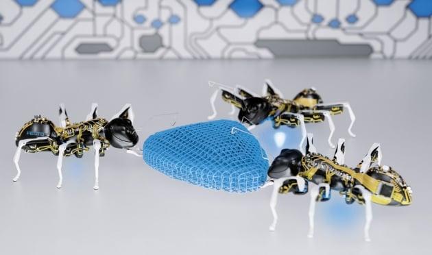Le formiche robot lavorano in squadra