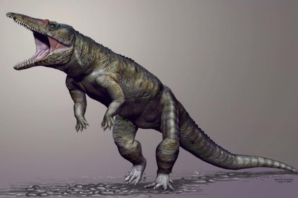Il coccodrillo gigante che camminava su due zampe
