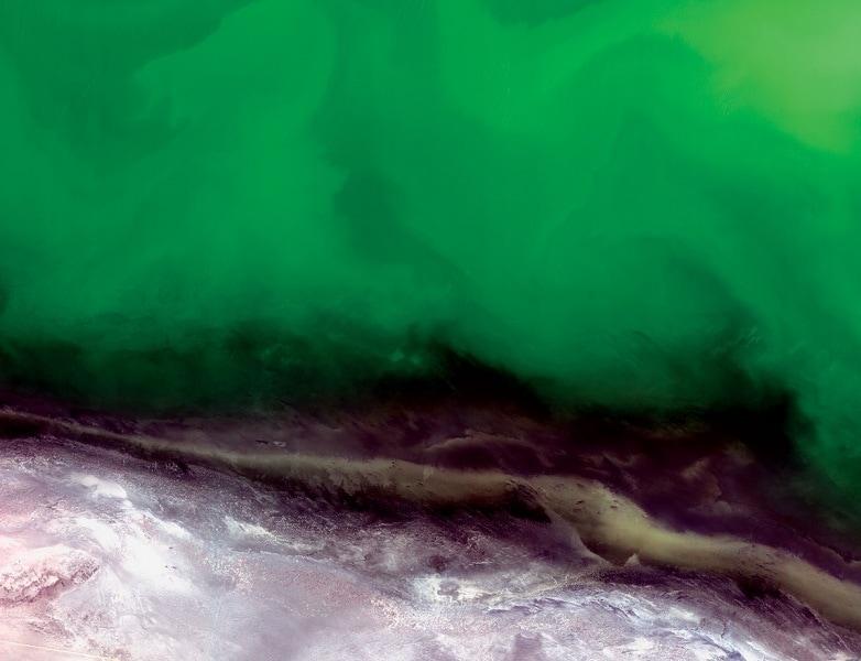 alghebloom