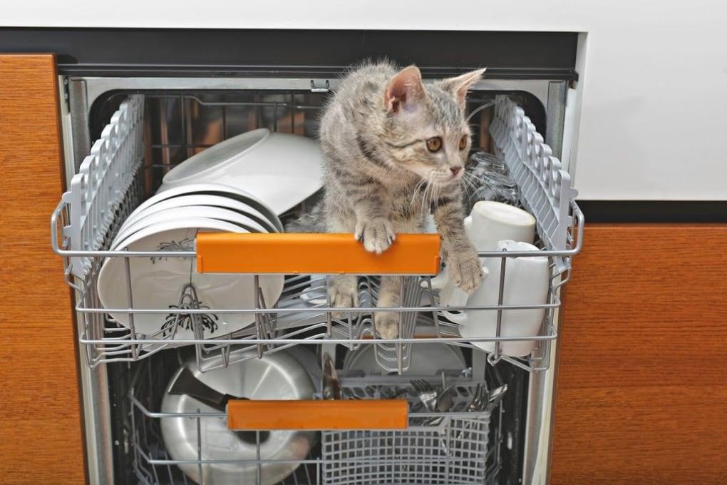 Come caricare la lavastoviglie? Te lo dice la scienza