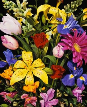 Qual è il colore più diffuso tra i fiori?