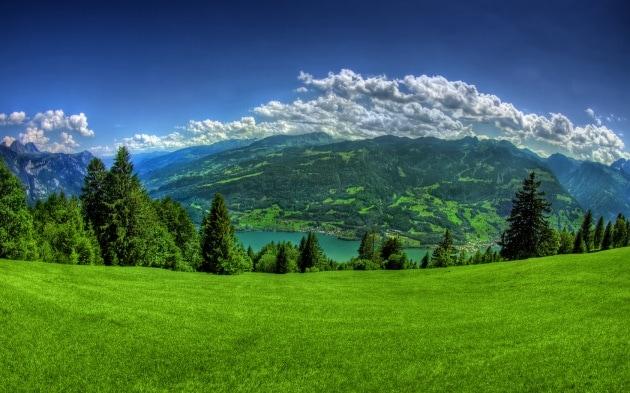 Le religioni e la difesa della natura