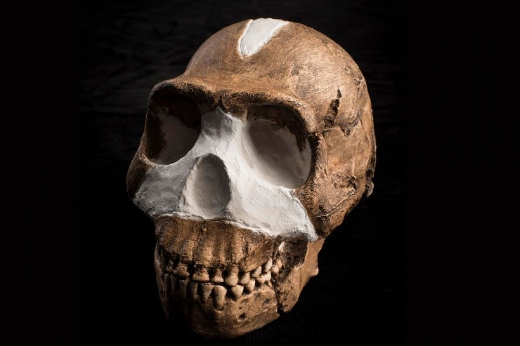 Homo naledi: le domande ancora aperte